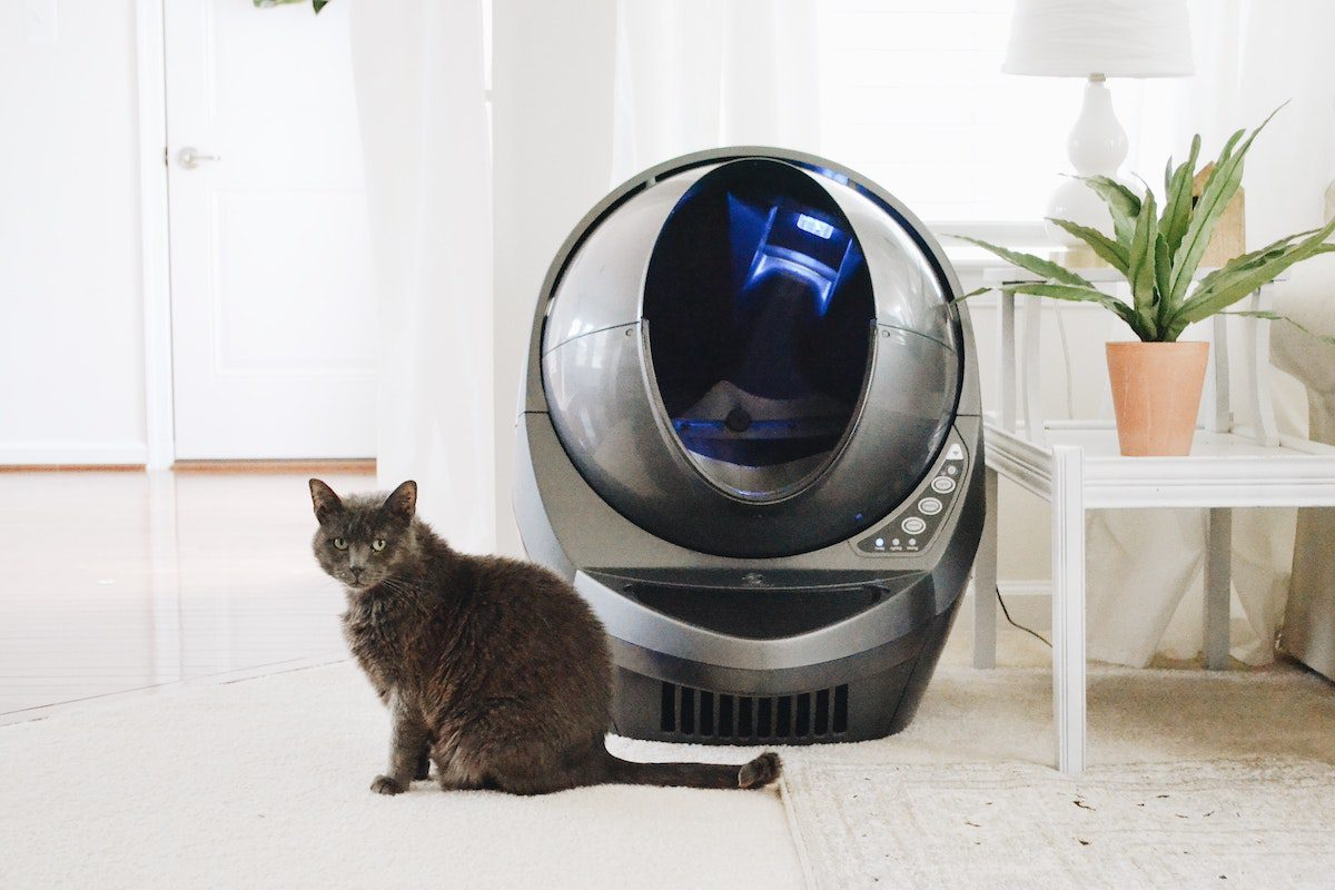 self cleaning litterbox